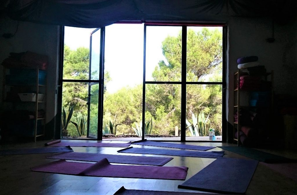 The yoga studio was such a fantastic learning opportunity and I am a dedicated yogi to this day